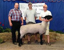 Dominion Livestock Company | Winners